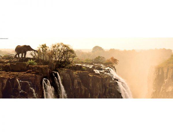 Puzzle 1000 Pcs Marsel van Oosten, Elephant-1