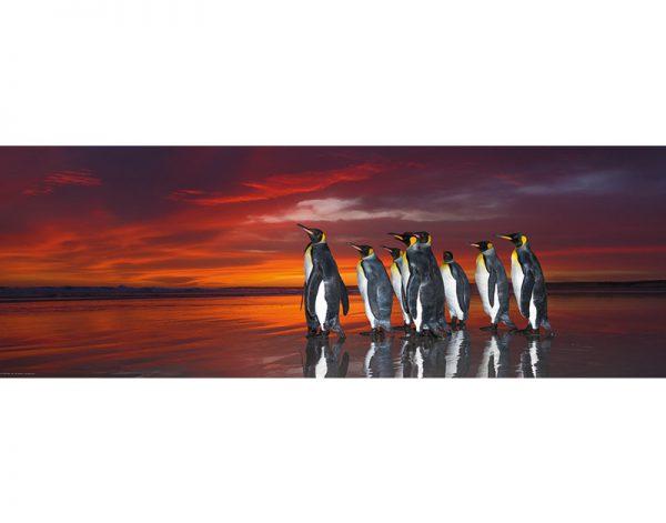 Puzzle 1000 Pcs AvH King Penguins2