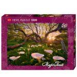 HEYE-Magic-Forests-29906-1
