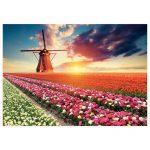 18465-1500-Paisagem-de-tulipas-2