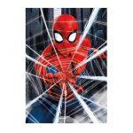 18486-500-Spider-man-2