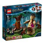 LEGO-HARRY-POTTER-O-Encontro-de-de-Umbridge-75967-1